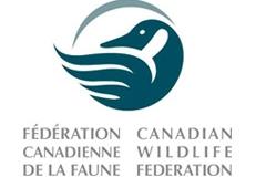 wildlifefederation